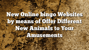 New Online bingo Websites by means of Offer Different New Animals to Your Amusements